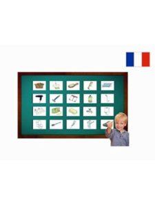 Yo-Yee Flashcards body  french vocabularies