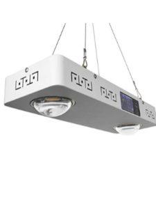 CFGROW cob light