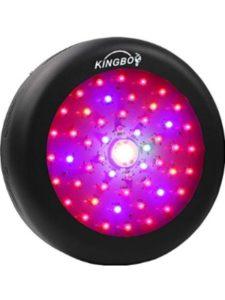 KINGBO LED cob light