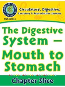 Susan Lang digestive system  science experiments
