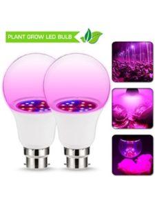 JandCase grow plant  light bulbs