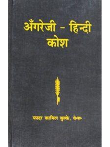 French & European Pubns hindi  french dictionaries