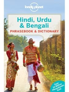 Lonely Planet hindi  french dictionaries