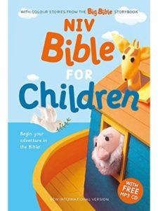 New International Version    international childrens bibles