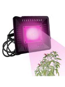 XZZ kit  cob grow lights