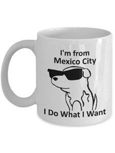 ruichangshichengjie pride  mexico cities