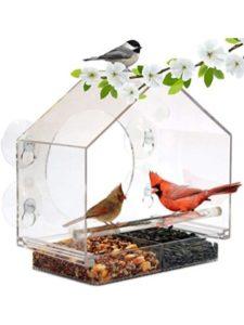 Jazmin review  bird feeders
