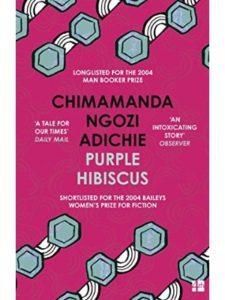 Chimamanda Ngozi Adichie short stories